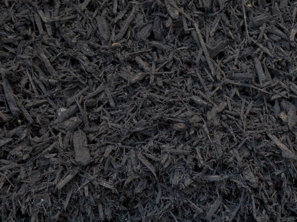Can I use compost as mulch what is the purpose of mulch